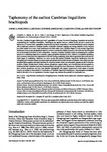 Taphonomy of the earliest Cambrian linguliform brachiopods - Acta ...
