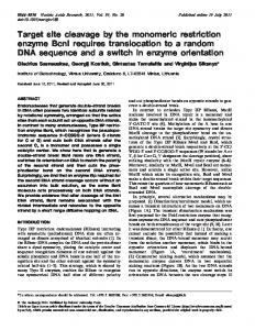 Target site cleavage by the monomeric restriction enzyme BcnI ...