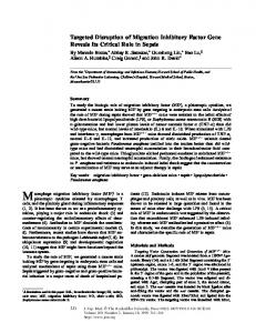 Targeted Disruption of Migration Inhibitory Factor ... - BioMedSearch
