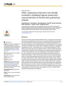 TASK-1 potassium channel is not critically involved in ... - PLOS