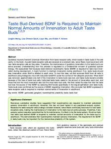 Taste Bud-Derived BDNF Is Required to Maintain Normal ... - eNeuro