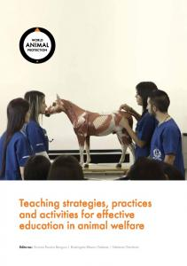 Teaching strategies, practices and activities for