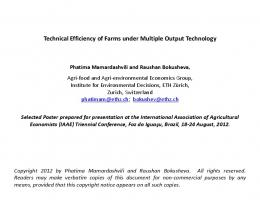 Technical Efficiency of Farms under Multiple Output ... - AgEcon Search