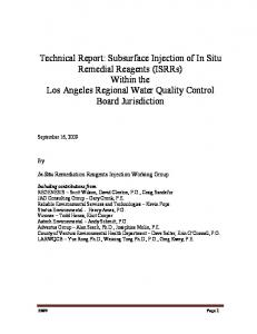 Technical Report: Subsurface Injection of In Situ Remedial ...