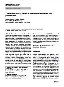 Telomerase activity in HeLa cervical carcinoma cell ... - Springer Link