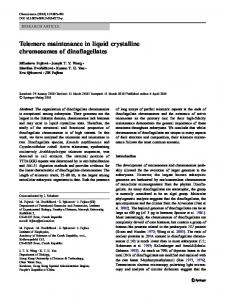 Telomere maintenance in liquid crystalline ... - Springer Link