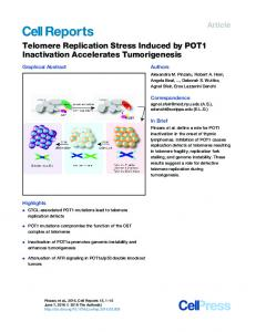 Telomere Replication Stress Induced by POT1 Inactivation ... - Cell Press