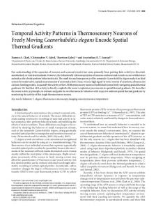Temporal Activity Patterns in Thermosensory ... - Harvard University