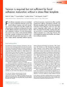 Tension is required but not sufficient for focal ... - BioMedSearch
