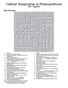 Test Review Crossword ANSWERS