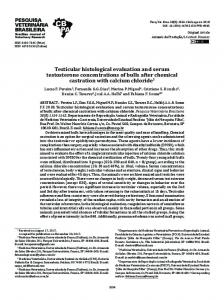 Testicular histological evaluation and serum testosterone ... - SciELO
