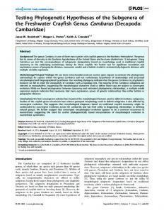 Testing Phylogenetic Hypotheses of the Subgenera of the ... - CiteSeerX
