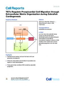 TETs Regulate Proepicardial Cell Migration through Extracellular
