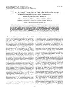 TFE, an Archaeal Transcription Factor in Methanobacterium ...