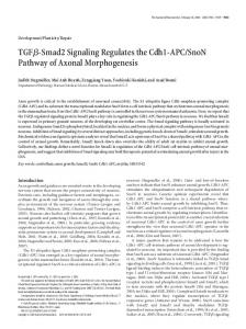 TGFß-Smad2 Signaling Regulates the Cdh1-APC/SnoN Pathway of ...