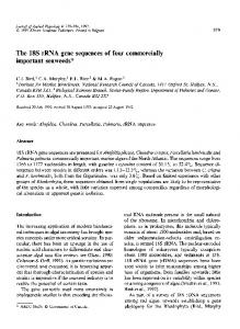 The 18S rRNA gene sequences of four commercially ... - Springer Link