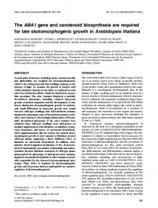 The ABA1 gene and carotenoid biosynthesis ... - Wiley Online Library