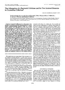The Adsorption of a Bacterial Cellulase to Crystalline Cellulose* and ...