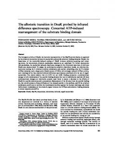 The allosteric transition in DnaK probed by ... - Wiley Online Library