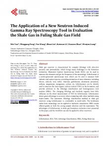The Application of a New Neutron Induced Gamma Ray Spectroscopy