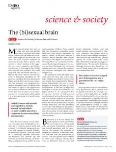 The (bi)sexual brain - Wiley Online Library