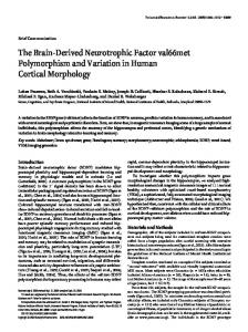 The Brain-Derived Neurotrophic Factor val66met ... - CiteSeerX