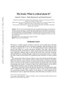 The brain: What is critical about it?