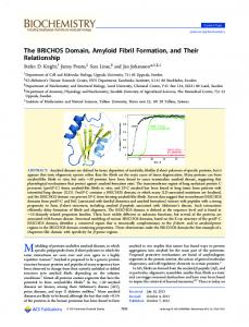The BRICHOS Domain, Amyloid Fibril Formation, and Their Relationship