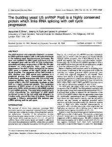 The budding yeast U5 snRNP Prp8 is a highly ... - BioMedSearch