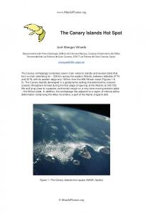 The Canary Islands Hot Spot