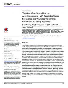 The Candida albicans Histone Acetyltransferase Hat1 ... - Plos