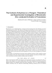 The Carbonic Anhydrase as a Paragon: Theoretical