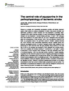 The central role of aquaporins in the ... - Semantic Scholar