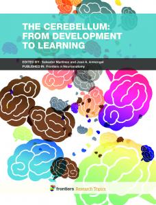 The Cerebellum: From Development to Learning