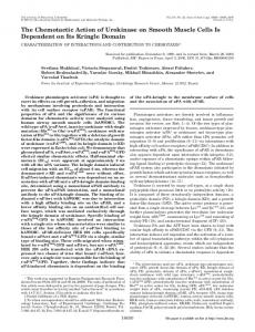 The Chemotactic Action of Urokinase on Smooth Muscle Cells Is ...