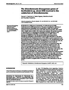 The chlorobenzoate dioxygenase genes of Burkholderia sp. strain