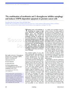 The combination of metformin and 2 deoxyglucose inhibits autophagy ...
