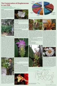 The Conservation of Zingiberaceae in Lao PDR