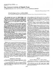 The Cytotoxic Activity of Shigella Toxin - The Journal of Biological ...
