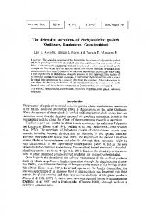 The defensive secretions of Pachyloidellus goliath