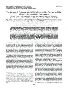 The Drosophila Selenoprotein BthD Is Required for Survival and Has ...