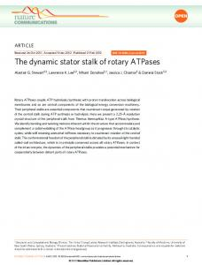 The dynamic stator stalk of rotary ATPases - The Victor Chang Cardiac ...