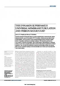 the dynamin superfamily: universal membrane ... - Endocytosis.org