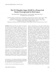 The E3 Ubiquitin Ligase SIAH2 Is a Prosurvival Factor Overexpressed ...