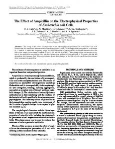 The Effect of Ampicillin on the Electrophysical ...