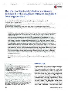The effect of bacterial cellulose membrane compared with collagen ...