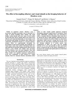 The effect of decoupling olfactory and visual stimuli ... - Semantic Scholar