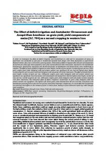 The Effect of deficit irrigation and Azotobacter Chroococcum and ...