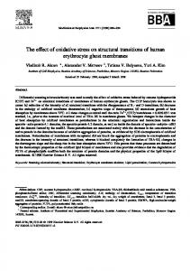 The effect of oxidative stress on structural transitions of human ...
