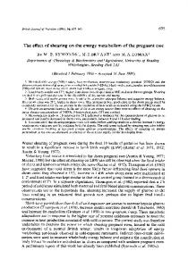 The effect of shearing on the energy metabolism of